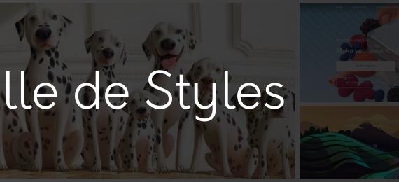 Feuille de Styles #10